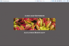 Сайт-визитка Александра Бермякова